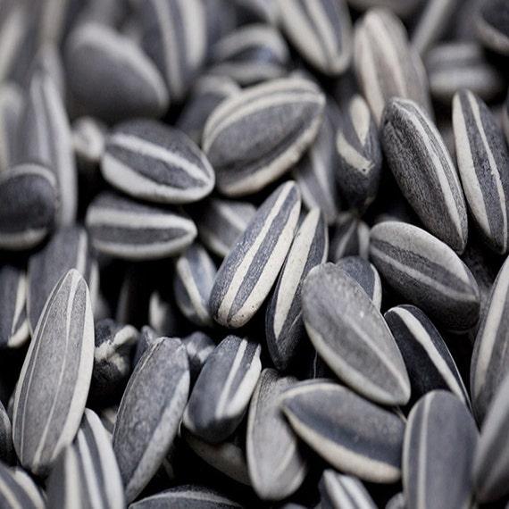 Ai WeiWei Porcelain Sunflower Seeds For Home by ... Ai Weiwei Sunflower Seeds