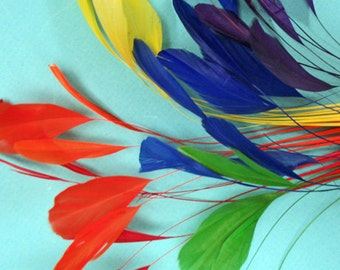About 48 Stripped Coque Feathers, Rainbow Mix, 6-8""