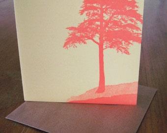 5-pack Windswept Coastal Tree letterpress square notecards