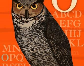 O Owl Alphabet Print 8x10 Signed