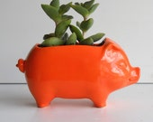 Pig Planter Ceramic 60s Mini Desk Pig Planter Vintage Design in Orange Succulent Planter