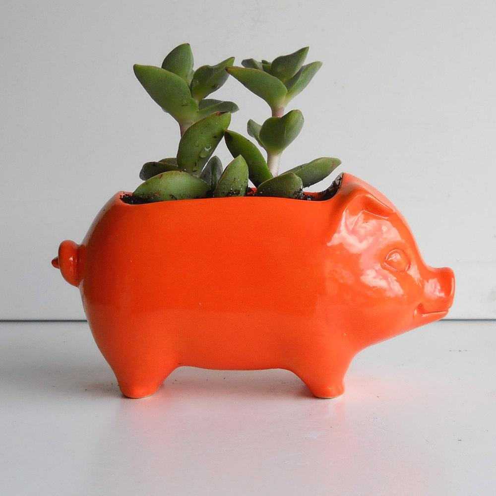 Pig Planter Ceramic Pig Mini Pig Desk Planter Vintage