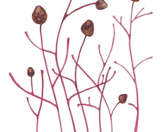 Original Watercolor Painting Seed Pods Autumn Home Decor