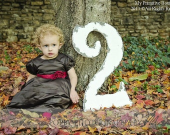 LARGE WOODEN NUMBERS | Number 2 | Baby's 2nd Birthday | Birthday Photo Props | Birthday Party Decoration | Birthday Cards |Party Invitations