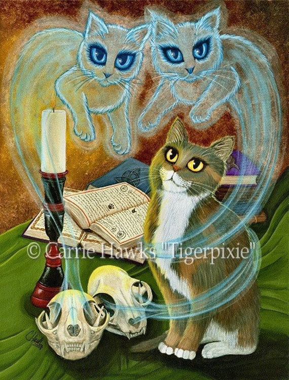Witch Cat Art Ghosts Skull Gothic Fantasy Limited Edition Canvas Print 11x14