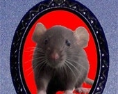 Pet Rat Necklace Ratty Cuteness Adorable Rodent Pendant Necklace Dumbo Rat So Cute