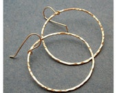 Big Pebbles - Sterling Silver Hoops - Paw & Claw Designs