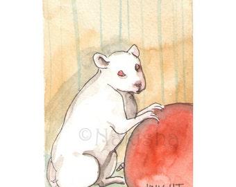 The BlueDogRose Tarot - Original Art - Knight of Rodents