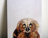 Little Baby Owl Art Postcard