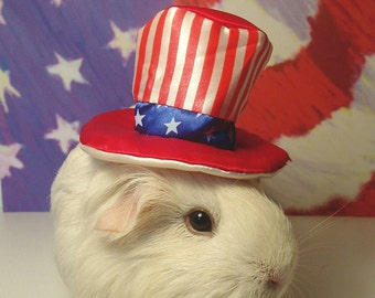"Patriotic July 4 GUINEA PIG ""Uncle Sam"" Portrait - Limited Edition 8x10"" Cavy Photograph"