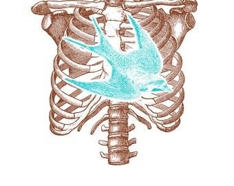 Flutter print (ribcage & bird, aqua or pink)