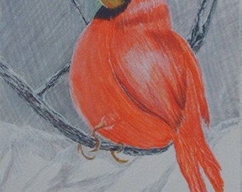 Cardinal in Winter (Repro. only)