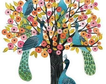 Peacock Tree