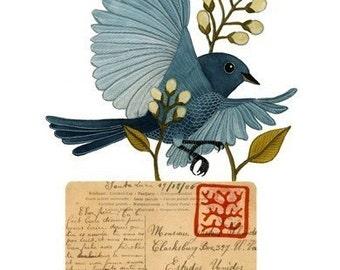 Bird No.14