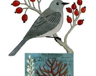 Bird No.10
