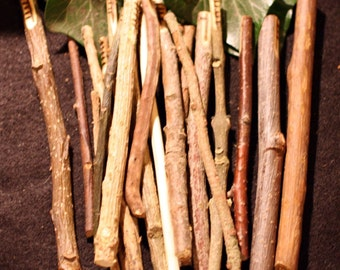 Long, Natural Celtic Tree Ogham staves made with corresponding woods - For Divination - For pagans, Wiccans and Witchcraft
