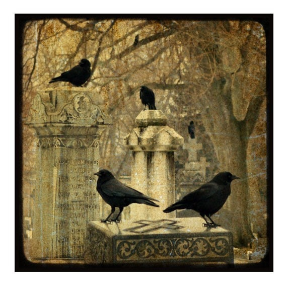 Gothic Crows In Winter Graveyard, TTV,  Gothic Photo, Blackbirds Print, Cemetery -  Day In January