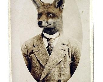 Fox Print, Young Mr. Fox,  8x12 Inch Print