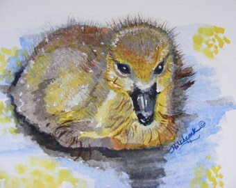 Baby Gosling Illustration, Fine Art Print, Watercolor Painting, Wildlife Art, Animals, Birds, Nature, Wildlife Animal Art, Home, Print