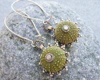 Sea Urchin Earrings - Special Green Earrings