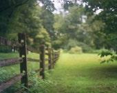 Fence Green Field Garden Photography Historic Property Bartram's Gardens Philadelphia Woods