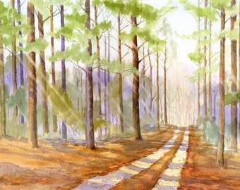 The Road Back Home Through a Pine Forest giclée print