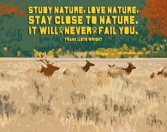 Study Nature, Love Nature Giclee Art Print, Matted Option, Free Ship in US, Frank Lloyd Wright, nature quote, nature gift, Yellowstone Park