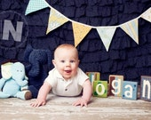 Fabric Bunting Banner Gender Neutral, 9 Large Flags Garland, Boys, Photography Prop, Yellows and Blues. Baby Shower, Birthday Party.