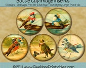 Bird Bottle Cap Images - 1 Inch Round Printable Images with Personified Birds - Birds About Town - Digital PDF and/or JPG File