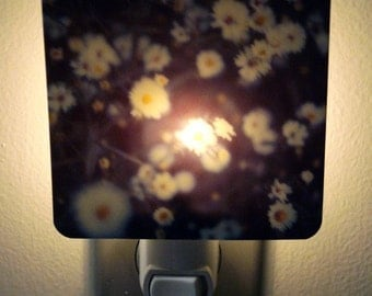 Clearance DISCONTINUED Polaroid Photo Night Light - Botanical in Blue - Unique Housewarming Gift, Whimsical Home Nursery Decor
