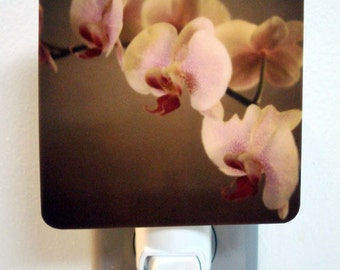 Clearance DISCONTINUED Polaroid Photo Night Light - Orchid Hearts - Unique Housewarming Gift, Whimsical Home Nursery Decor