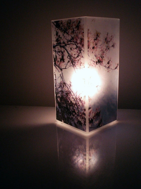 Cherry Blossom Light - Glass Polaroid Photo Table Lamp - Unique Housewarming Gift, Home Decor, Functional Illuminated Art