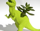 Trex Dinosaur Planter TREX Great Dorm Office Home Decor Gift for Get Well  Boss' Teachers
