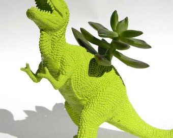 Trex Dinosaur Planter TREX Great Dorm Office Home Decor Gift for Get Well  Boss' Teachers