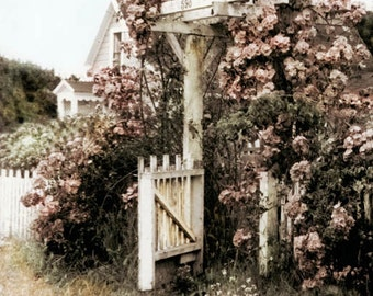Mendocino Rose Gate Tinted Fine ARt Photograph