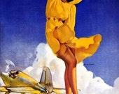 ELVGREN - TAILWIND - WWII Pin-Up  Bomber Nose Art, Vintage Dress, Nylons Stockings Garters Pinup Vanguard Gallery