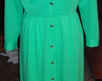 Timelessly CHIC 1970's Mint Green Maxi Dress