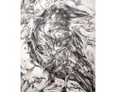 RAVEN Archival Ink Jet Print of Original Graphite Drawing