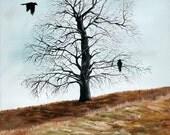 Oak Tree - 8x10 fine art print