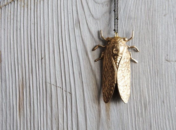 Cicada Necklace. Bug Jewelry. Insect Necklace. Long Layering Brass Pendant. Rustic Science Entomology Nature Jewelry. FREE Shipping in US