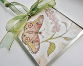 Art Bevel 3x3 Print of Original Art Hanging Butterfly - digiliodesigns
