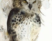 owl art - Great Horned Owl Archival print of watercolor- , rustic home decor, natural, owl art, men, for him