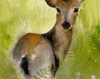 Field- Deer Watercolor Archival Print