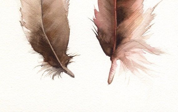 Feathers No. 2   feather painting, nature, archival print