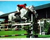 Vintage Postcard, Dublin Horse Show, Ireland Equestrian Rider Jumping