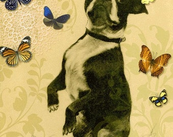 Greeting Card Boston Terrier Dog can be personalized