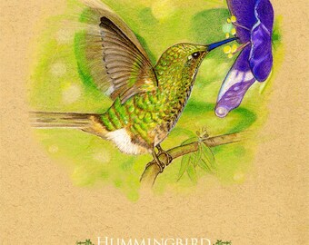Hummingbird Art Print    8 x 10 Inches   Can be personalized