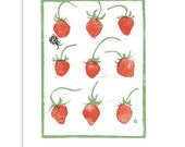 French Strawberries Block Print Art Reproduction