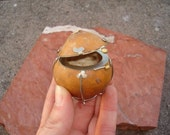 And Your Bird Can Sing - Gourd Treasure Box - OOAK