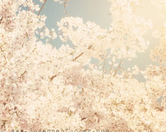 Blossom photograph, pale pink blossoms, spring decor, sky, sunshine, shabby chic decor, floral wall art - It was Raining Pink Blossoms